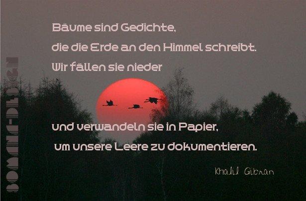 Top Informationen über esoterische sprüche - Bestes ausgewähltes ...