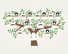 Genealogie für Anfänger