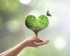 Nachhaltig leben: 6 Tipps für einen umweltfreundlichen Alltag