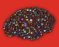 Emotionale Intelligenz: Wieso ist sie so wichtig?