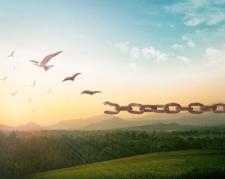 Wenn aus Liebe Abhängigkeit wird: Emotionale Abhängigkeit erkennen und auflösen
