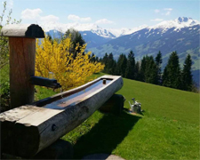 Tiroler Bergsommer: Sommerurlaub im Zillertal